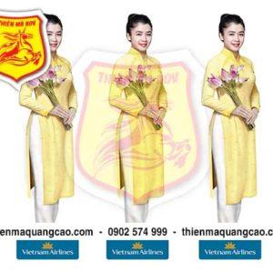 Mô hình Vietnam airlines New
